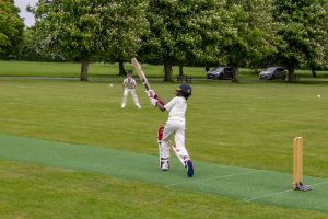 The Grove Colts Cricket vs Ashfold School