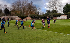 The Grove U8 & U9 Rugby vs Ashfold School